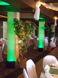 Green uplighting at the Terrace